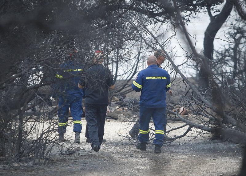 Επιχείρηση της πυροσβεστικής στη Ραφήνα
