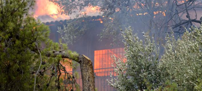Εχουν καεί πάνω από 200 σπίτια, υπάρχουν νεκροί λέει ο δήμαρχος Ραφήνας -Φωτογραφία: ΧΡΥΣΟΧΟΪΔΗΣ ΓΡΗΓΟΡΗΣ