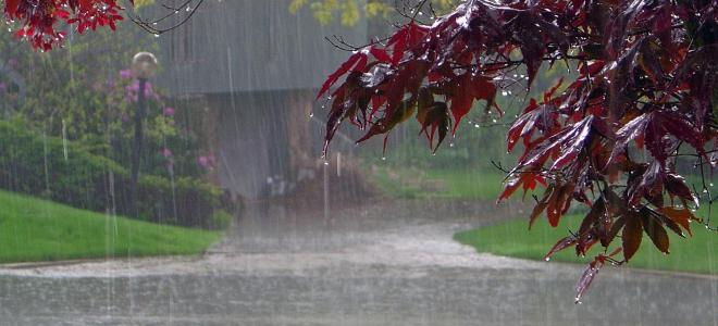Βροχές και ισχυρές καταιγίδες σε όλη τη χώρα: Σε ποιες περιοχές θα είναι έντονα