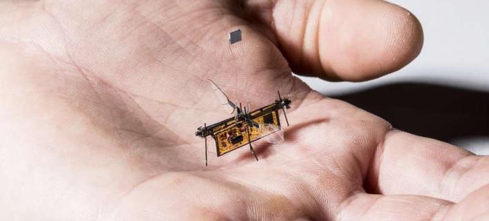 Πέταξε το Robofly -Το πρώτο ασύρματο ρομποτικό έντομο [βίντεο]