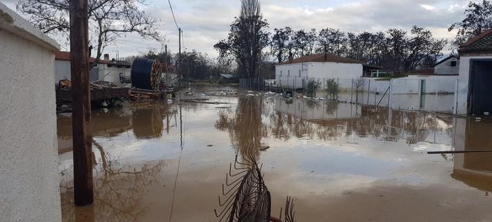 Δύσκολη νύχτα στη Ροδόπη -Πλημμυρισμένα σπίτια, κινδύνεψαν ζωές /Φωτογρασφία: xronos.gr