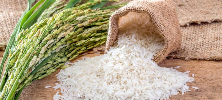 Ρύζι/Φωτογραφία: SHUTTERSTOCK