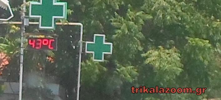 ΦΩΤΟΓΡΑΦΙΑ: trikalazoom.gr