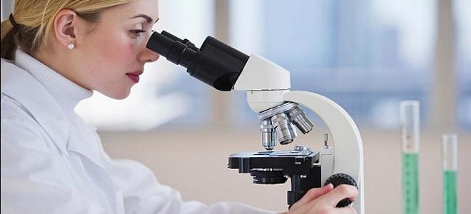 Επιστημονικά επιτεύγματα του 2013: Αυτές ήταν οι μεγαλύτερες ανακαλύψεις της χρο