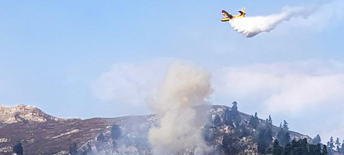 Πυρκαγιά ξέσπασε τα ξημερώματα κοντά στην Ιερά Μονή Σέλτσου / Φωτογραφία: Εpirus tv news