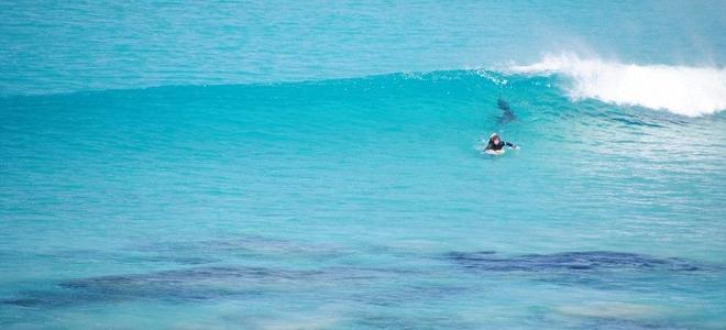 Καρχαρίας τριών μέτρων επιτίθεται σε σέρφερ στην Αυστραλία: Καρέ καρέ η καταδίωξ