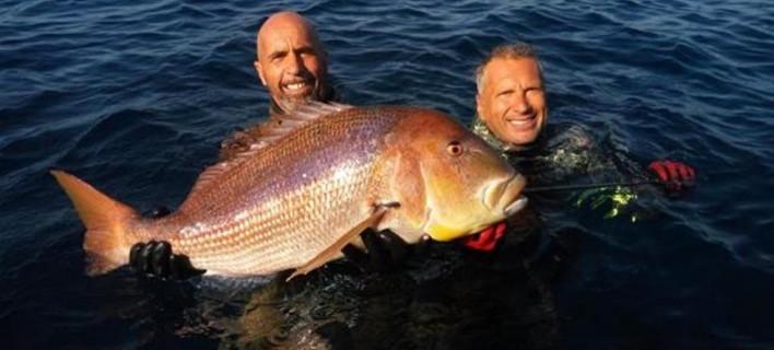 Η συναγρίδα-τέρας στη Χίο που χάρισε παγκόσμιο ρεκόρ σε Ελληνα ψαροντουφεκά [εικόνα]
