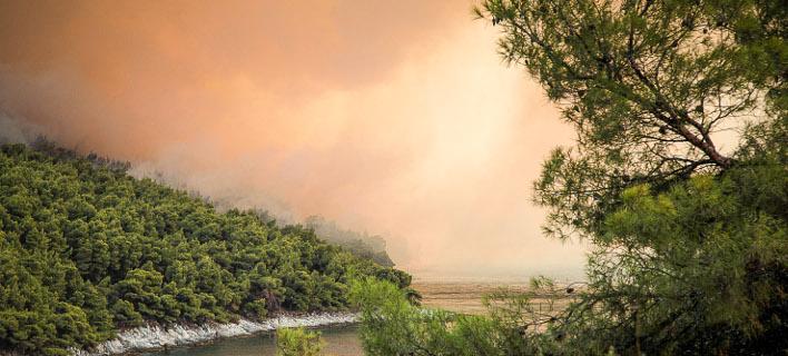 μεγάλη πυρκαγιά στη Σκόπελο/Φωτογραφία: Eurokinissi/ΛΕΥΤΕΡΗΣ ΠΟΥΛΙΟΣ