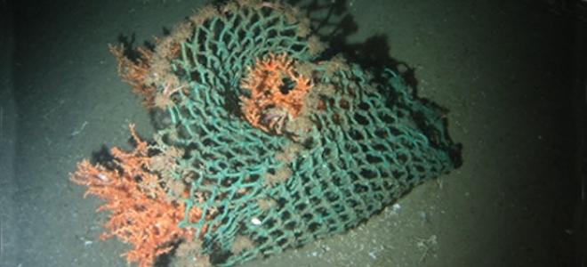 Τα σκουπίδια «εξερευνούν» τους ωκεανούς πριν από μας: Τι ανακάλυψαν οι ερευνητές