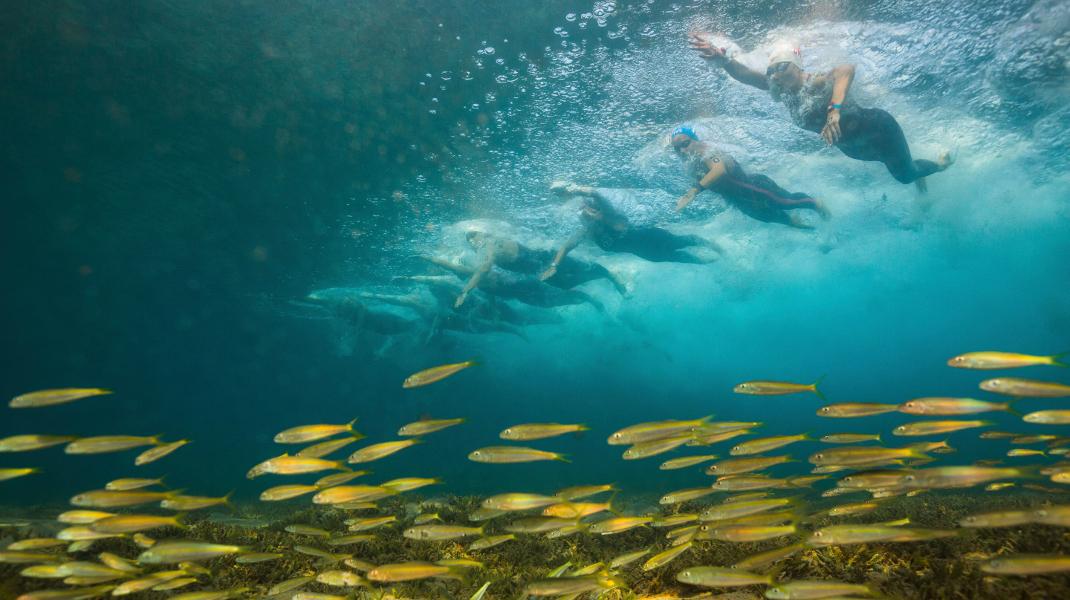 Παγκόσμιο πρωτάθλημα νέων ανοικτής θάλασσας στο Ισραήλ -Θεατές και τα ψάρια! -Φωτογραφία: AP Photo/Gilad Kavalerchik