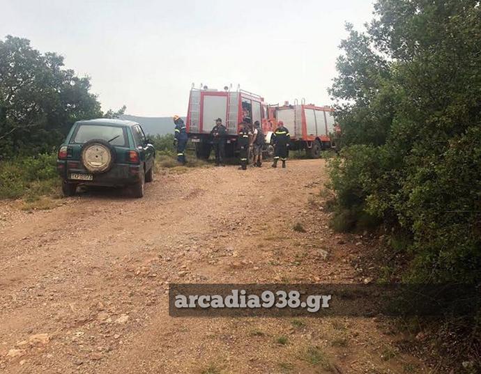 Ακόμη, μεγάλες επίγειες δυνάμεις πυροσβεστών και από την αεροπορική δύναμη Τρίπολης βρίσκονται στην περιοχή.