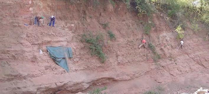 Επιστήμονες ανακάλυψαν στη νοτιοδυτική Τανζανία το απολίθωμα ενός φυτοφάγου δεινόσαυρου