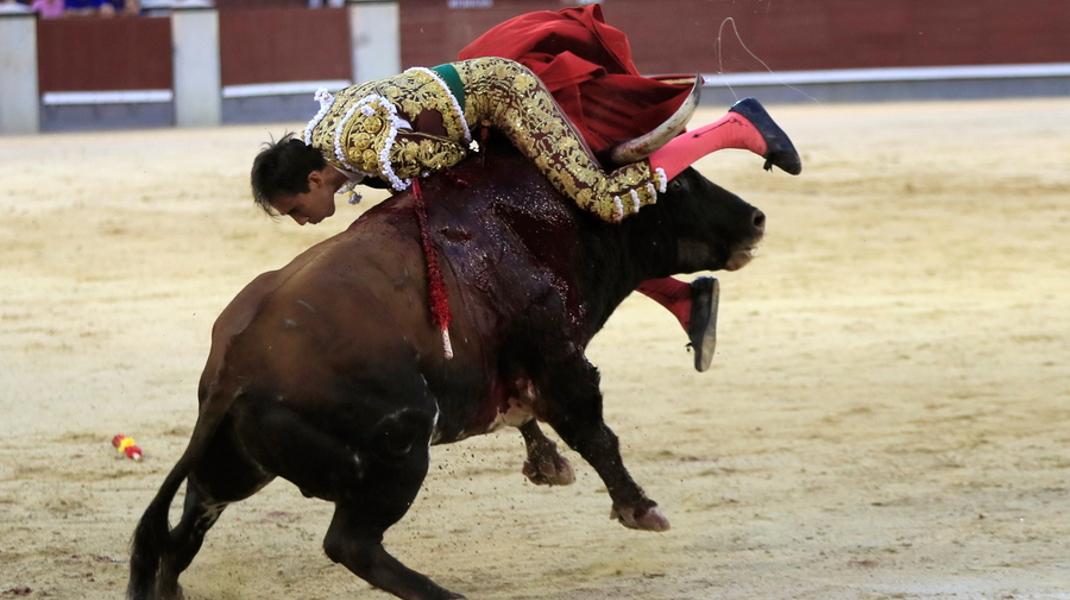 Η εκδίκηση του ταύρου -Φωτογραφία: EPA/FERNANDO ALVARADO