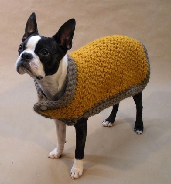 the warm dog coat from beantown handmade dog clothing VIDEO: Η απίστευτη ιστορία του Bean, του σκύλου μοντέλο!!!