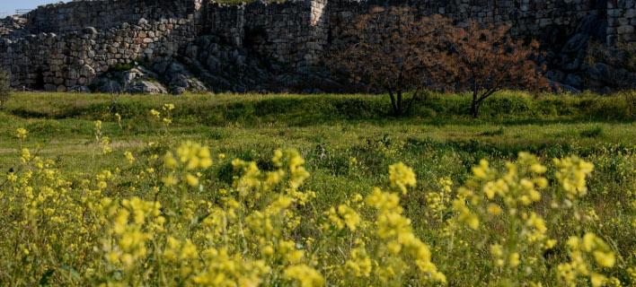 Ανοιξη στην αρχαία Τίρυνθα (Φωτογραφία: Eurokinissi-ΠΑΠΑΔΟΠΟΥΛΟΣ ΒΑΣΙΛΗΣ)