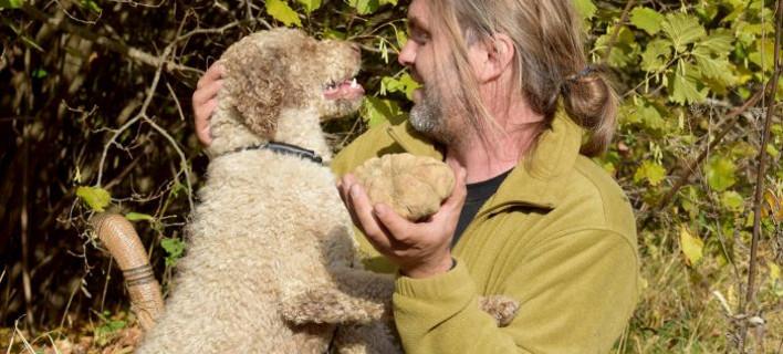 Η μεγαλύτερη τρούφα παγκοσμίως βρέθηκε στην Καλαμπάκα