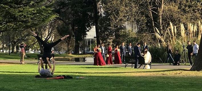 Γαμήλια φωτογράφιση σε πάρκο της Μελβούρνης, Φωτογραφία: facebook