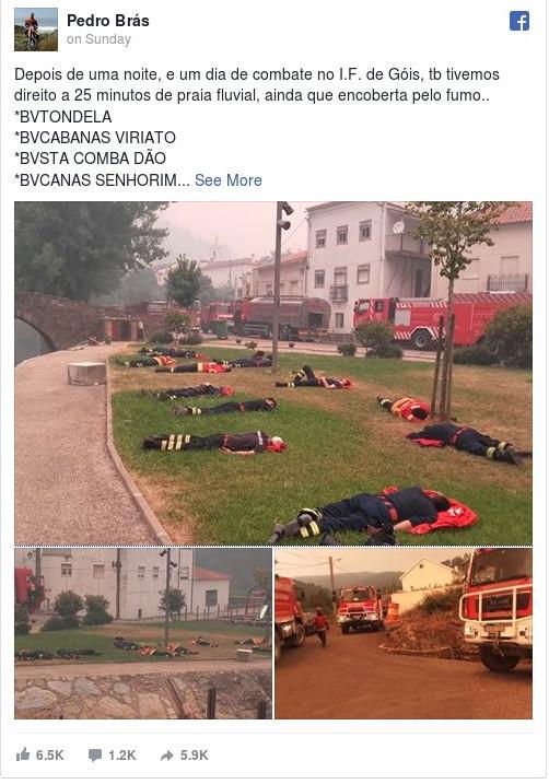 viral1_0 Viral: Η συγκλονιστική φωτογραφία με τους πυροσβέστες στην Πορτογαλία να κοιμούνται σαν άψυχες κούκλες [εικόνες]