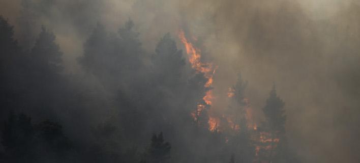 Μαίνεται ανεξέλεγκτη η πυρκαγιά στη Σιθωνία Χαλκιδικής -Φωτογραφία: Intimenews/ΤΟΣΙΔΗΣ ΔΗΜΗΤΡΗΣ