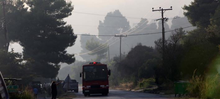 Υπό μερικό έλεγχο η φωτιά στην Κασσάνδρα Χαλκιδικής (Φωτογραφία: ΜΟΤΙΟΝΤΕΑΜ/ΒΕΡΒΕΡΙΔΗΣ ΒΑΣΙΛΗΣ)