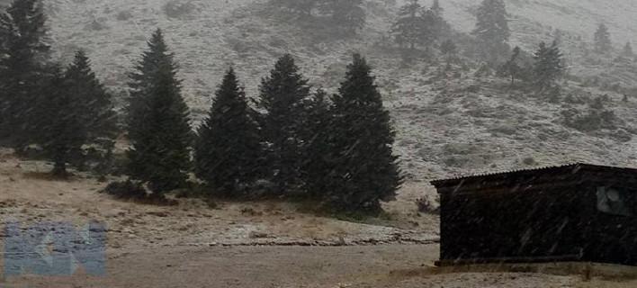 Στα Καλάβρυτα χιονίζει -Στα λευκά ντύνεται ο Χελμός [εικόνα]