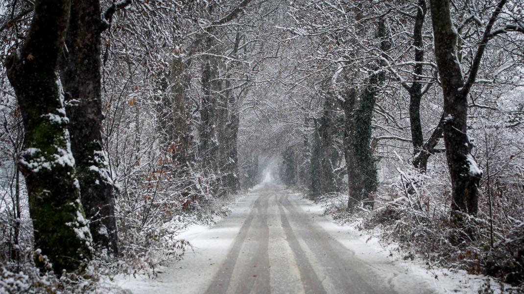 Μαγικό μονοπάτι στο χιονισμένο τοπίο του νομού Τρικάλων -Φωτογραφία: EUROKINISSI/ΘΑΝΑΣΗΣ ΚΑΛΛΙΑΡΑΣ