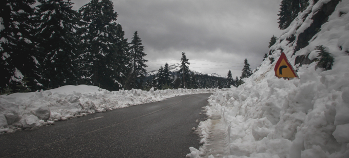 Xιόνι στα Τρίκαλα/ Φωτογραφία: Eurokinissi- ΚΑΛΛΙΑΡΑΣ ΘΑΝΑΣΗΣ
