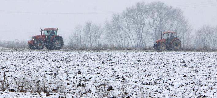 Πώς θα αποζημιωθούν οι αγρότες και οι κτηνοτρόφοι που χτυπήθηκαν από τα ακραία καιρικά φαινόμενα