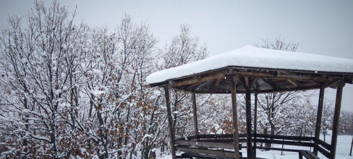 χιόνια στο νομό Τρικάλων/Φωτογραφία: Eurokinissi