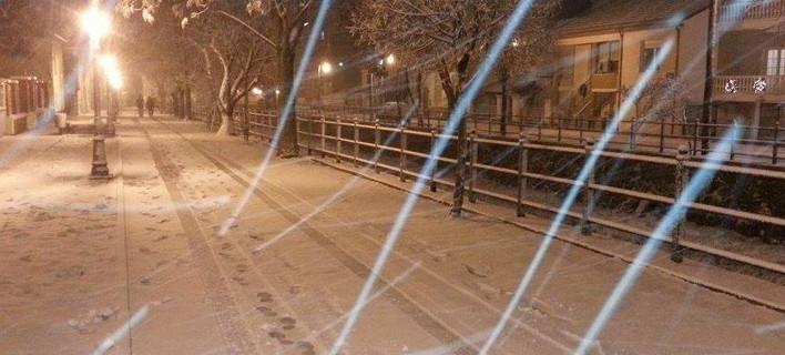 Στα λευκά ντύθηκε η Φλώρινα -Επεσαν τα πρώτα χιόνια [εικόνες & βίντεο]