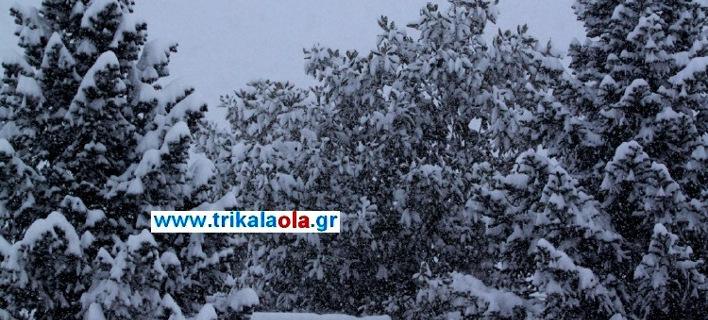 Πυκνή χιονόπτωση στα Τρίκαλα -30 πόντοι το χιόνι στην πόλη [εικόνες & βίντεο]
