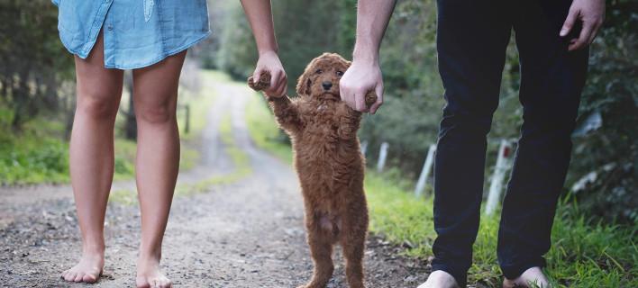 Βαρέθηκαν να τους ρωτούν «πότε θα κάνετε παιδί» και φωτογραφήθηκαν με το σκύλο τους σαν να ήταν... μωρό -Κλαίει το διαδικτύο [εικόνες]