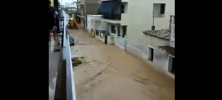 Πλημμύρες σε Πελοπόννησο λόγω του κυκλώνα Ζορμπά/ Φωτογραφία: twitter