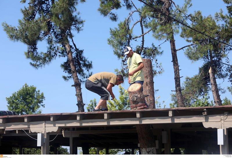 Εργάτες στη Χαλκιδική