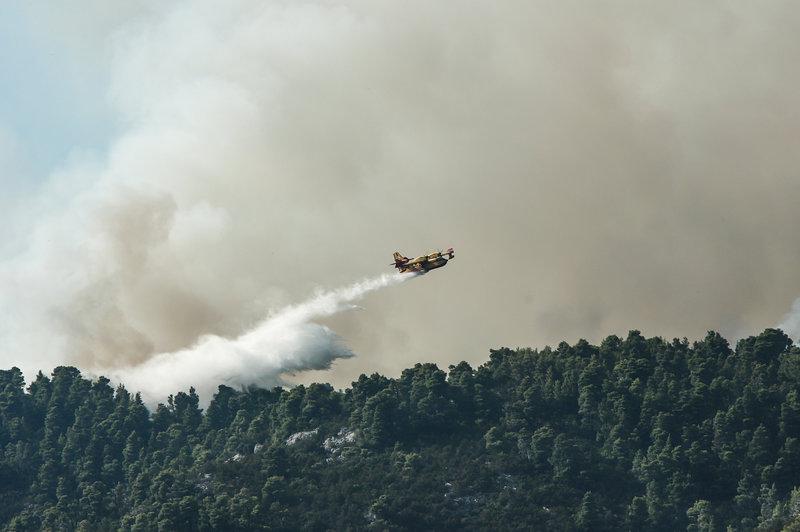 Αεροπλάνο ρίχνει νερό σε δάσος στη φωτιά