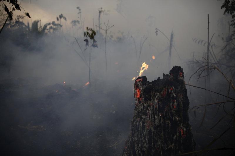 Μεγάλη καταστροφή στον Αμαζόνιο.