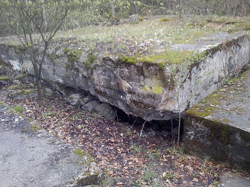 Tο μπούνκερ της Βέρμαχτ όπου σύμφωνα με τους ιθύνοντες του του μουσείου Mamerky Bunkry στη βορειοανατολική Πολωνία μπορεί να κρύβεται το Κεχριμπαρένιο Δωμάτιο.