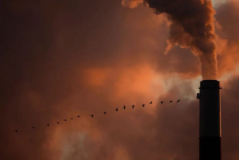 Koπάδι αγριόχηνες περνά μπροστά από την υψικάμινο λιγνιτικής μονάδας παραγωγής ενέργειας στο Κάνσας