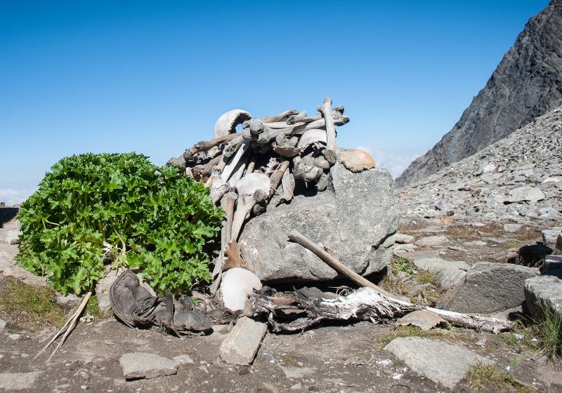 Εκατοντάδες σκελετοί ανακαλύφθηκαν το 1942 στη λίμνη Roopkund στα Ιμαλάια.