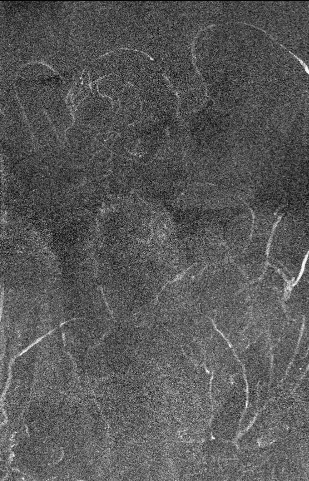 H «Παναγία των Βράχων» και το σχέδιο που ανακαλύφθηκε από κάτω.