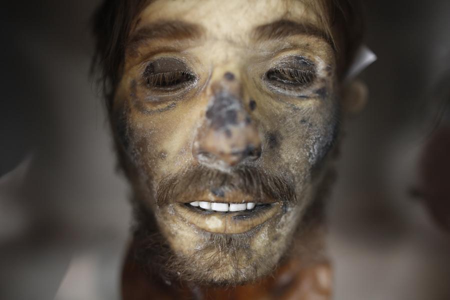 Φωτογραφία που δόθηκε σήμερα στην δημοσιότητα εικονίζει την ταριχευμένη κεφαλή του περιβόητου λήσταρχου Γιαγκούλα που βρίσκεται σε προθήκη μαζί με τις κεφαλές άλλων ληστών στο Εγκληματολογικό Μουσείο της Ιατρικής Σχολής του Πανεπιστημίου Αθηνών