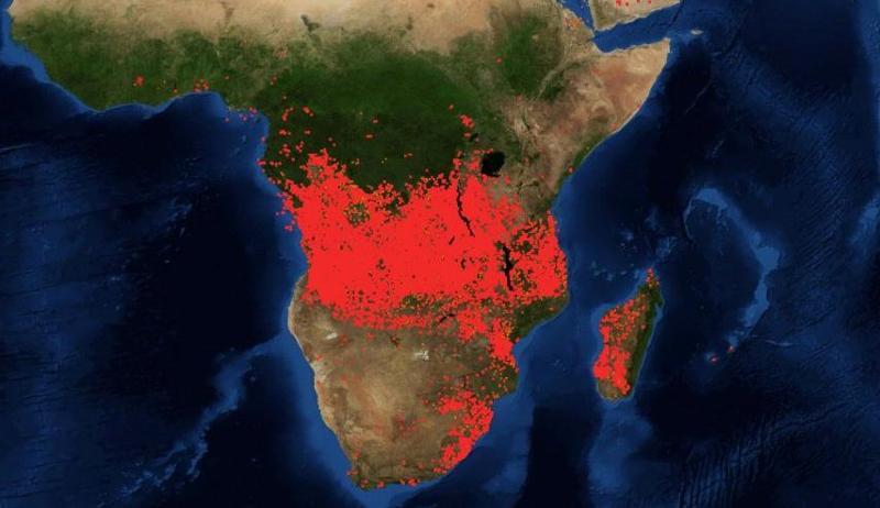 Οι κόκκινες κουκίδες στο χάρτη αντιπροσωπεύουν τις πυρκαγιές στην κεντρική Αφρική.