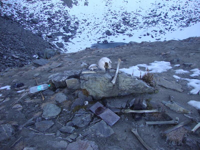 Μεταξύ των σκελετών στη λίμνη Roopkund βρέθηκαν και λείψανα ατόμων, που η προέλευσή τους συνδέεται με την ανατολική Μεσόγειο και ειδικά την Κρήτη.