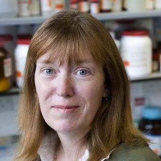 Η επικεφαλής της ομάδας του Πανεπιστημίου της Οξφόρδης, Σάρα Γκίλμπερτ