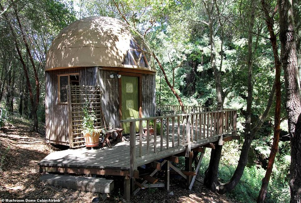 Αυτή η καμπίνα είναι το πιο διάσημα κατάλυμα του Airbnb