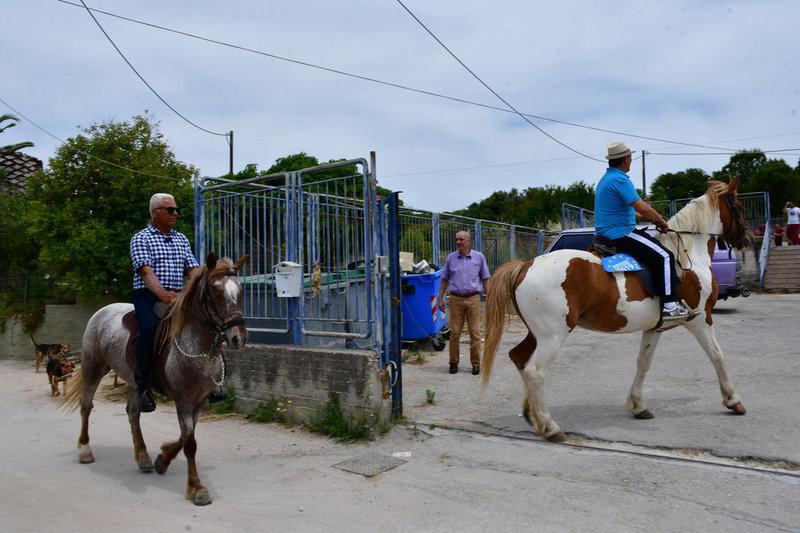 Αλογα μπαίνουν σε σχολείο
