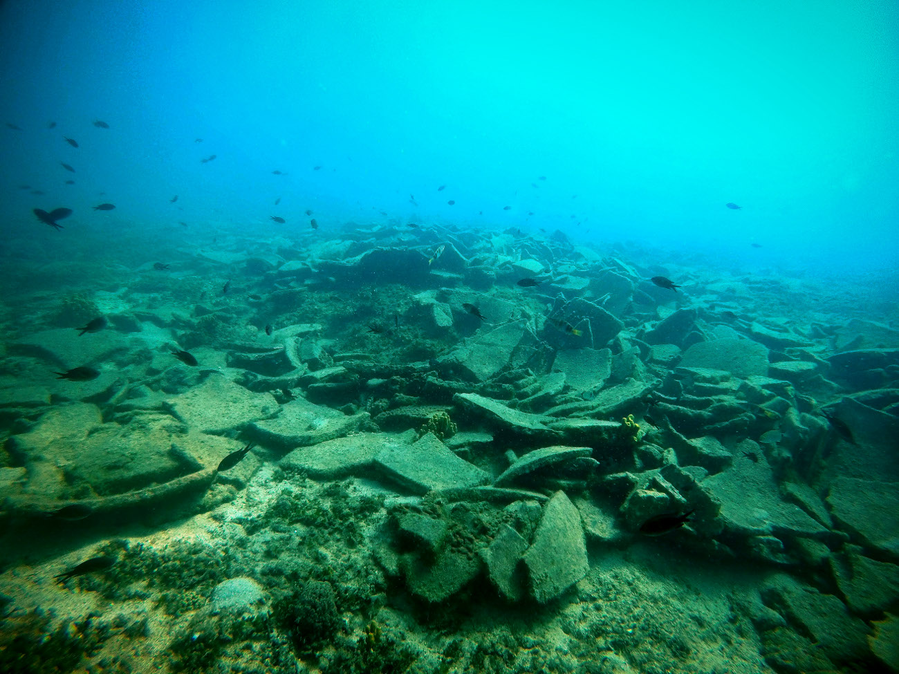 Ευρήματα στον βυθό της Αλοννήσου γύρω από το περίφημο ναυάγιο της Περιστέρας