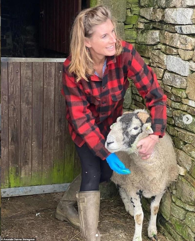 Η Αμάντα με ένα πρόβατο