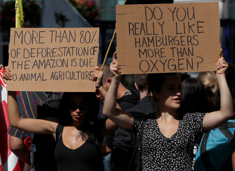 Διάσωση του Αμαζονίου ζητούν οι διαδηλωτές / Φωτογραφία: AP