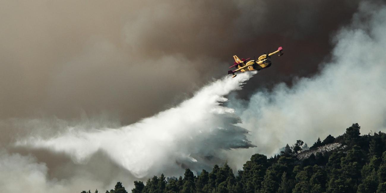 Φωτιά στην Εύβοια: Μεγάλη αναζωπύρωση κοντά στην Πλατάνα